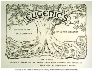 eugenictree