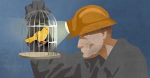 canary_coalmine